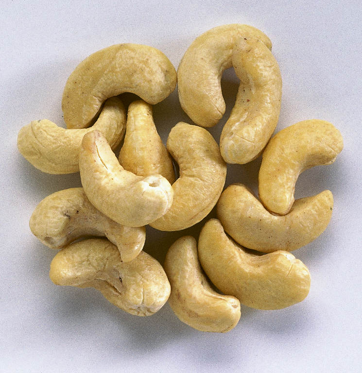 Buy Cashew nuts