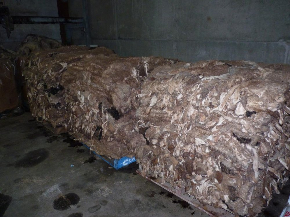 Buy WE OFFER DRY SALTED DONKEY HIDES / WET SALTED DONKEY HIDES