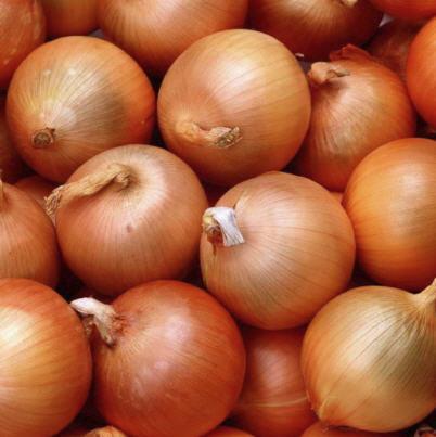 Buy Fresh Onion