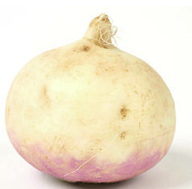 Buy Turnip