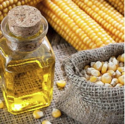 Buy Corn oil