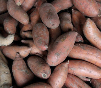 Buy Sweet Potato