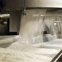 White refined cane sugar ICUMSA:45