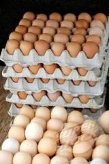 Fresh Brown and White Table Eggs