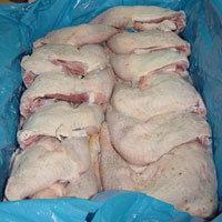 Frozen Chicken and Chicken Feet and Parts