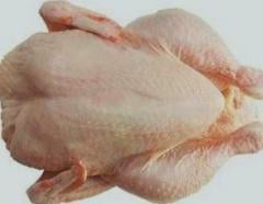 Grade A Frozen Chicken, Frozen meat  and Bone meal