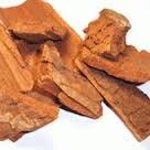 Pausinystalia yohimbe bark