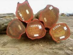 African hardwood for sale