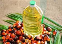 Пальмовое масло и пальмовый олеин