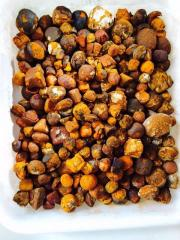 We offer Cow/Ox/Cattle Gallstones