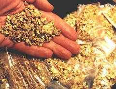 97+% Pure gold nuggets for sale