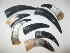 We offer Elephant tusk horn, Buffalo polished horn,antelope horn, cow horn