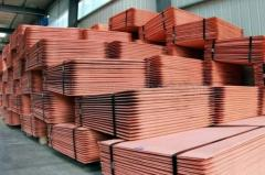 Selling High Purity Millberry Copper Cathode 99.99%