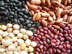 Black Kidney Beans/White Kidney Beans/Red Kidney