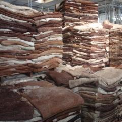 Quality Dry Donkey Hides,wet salted cow hides, goat and ship hides available .
