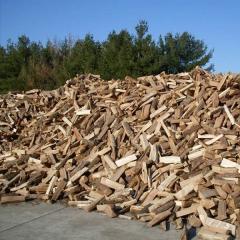 Dried Quality Firewood/Oak fire