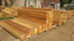 Tropical hardwood from Cameroon