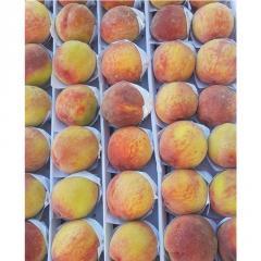 100% органические натуральные свежие фрукты